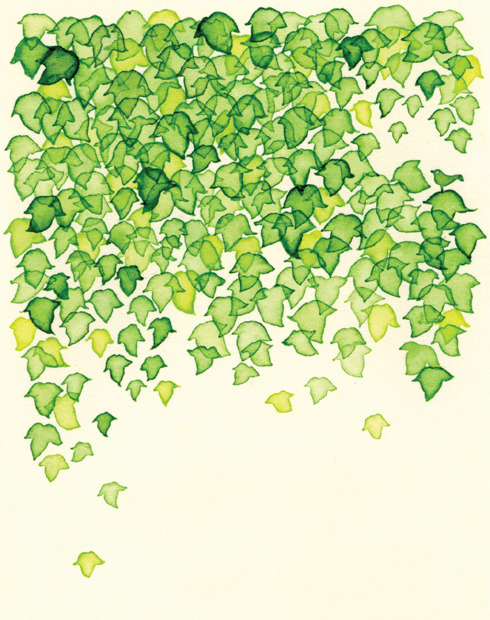 490x620 Leaves Drawing Tumblr