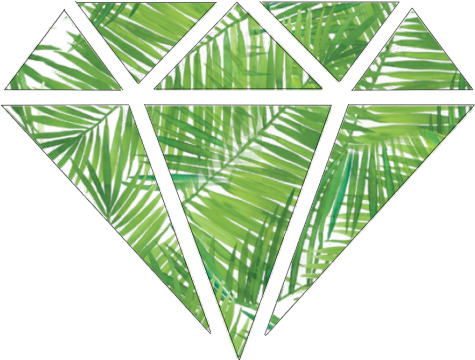 475x360 Tumblr Drawing Green Leaves Diamond Freetoedit
