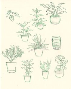236x298 Cute Plants Draw Tumblr