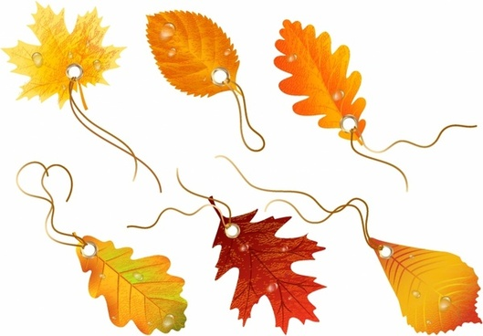529x368 Autumn Scenery Drawing Falling Leaves Free Vector Download (94,635