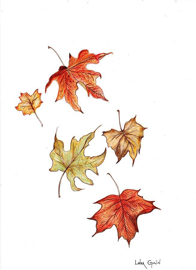 653x900 Falling Leaves Canvas Print Canvas Art By Linda Ginn Leaf