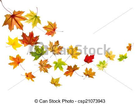 450x334 Maple Leaves Falling. Maple Autumn Falling Leaves, Vector Eps