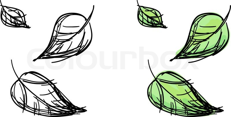 800x407 Vector Sketch Of Falling Leaves Stock Vector Colourbox