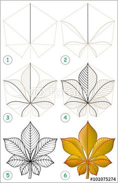 236x366 How To Draw Tree Leaves Art Tree Leaves, Leaves