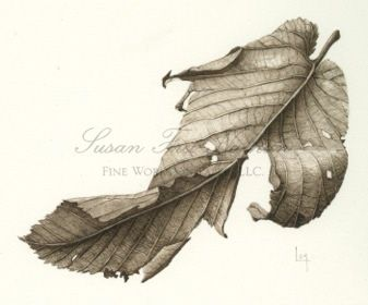 337x280 Dried Leaf, 201 By Lara Call Gastinger Watercolor Trees