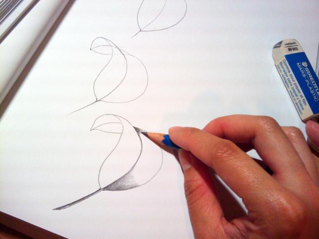 648x486 A New Leaf (Colored Pencil Sketch) Peanutbrittle Diaries