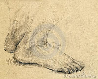 400x322 Pencil Drawing Human Leg Stock Photos Drawing Legs