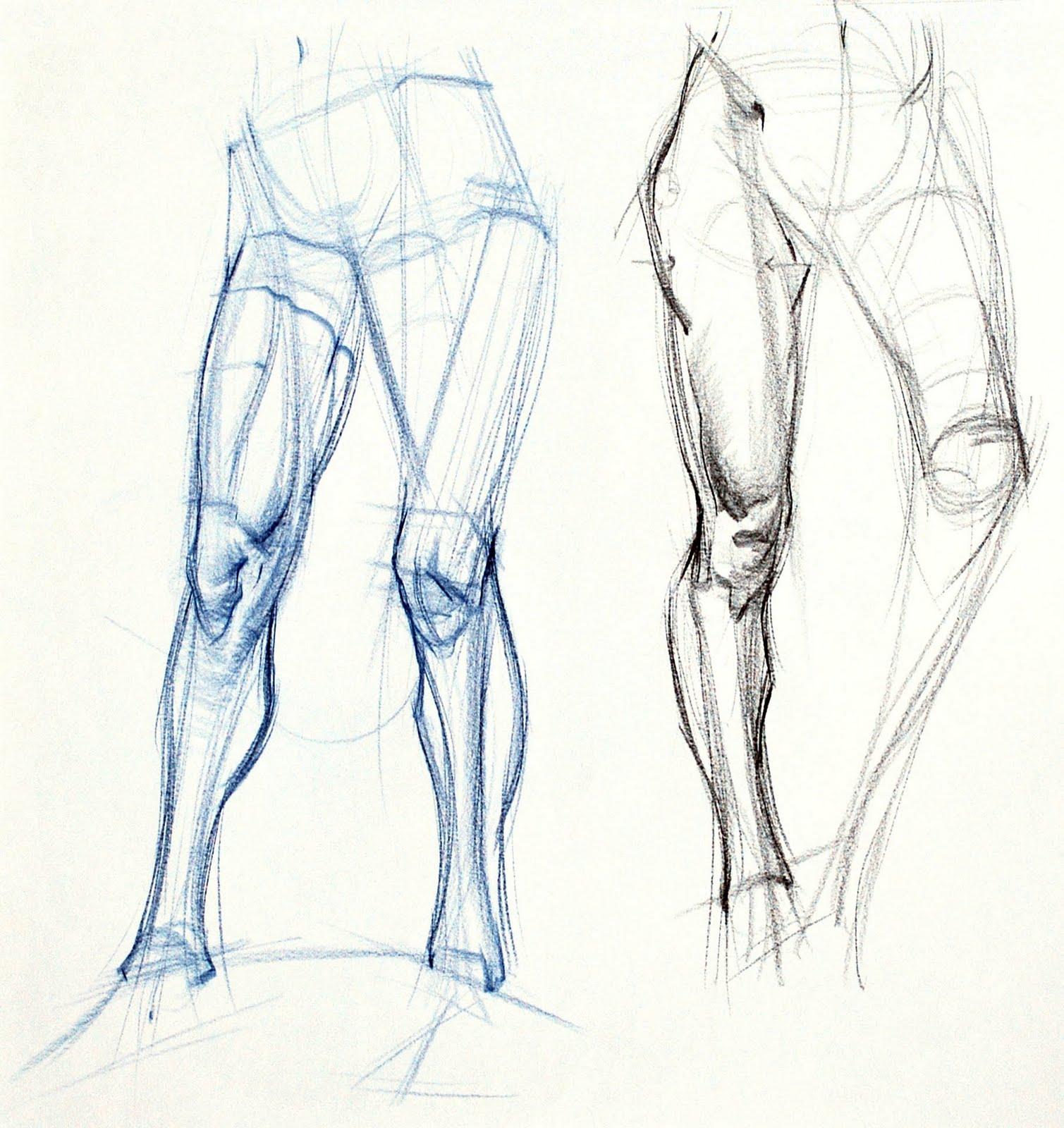 1509x1600 News Additional Leg Examples