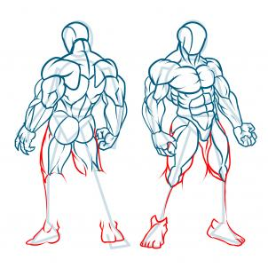 302x302 How To Draw Muscles, Step By Step, Anatomy, People, Free Online