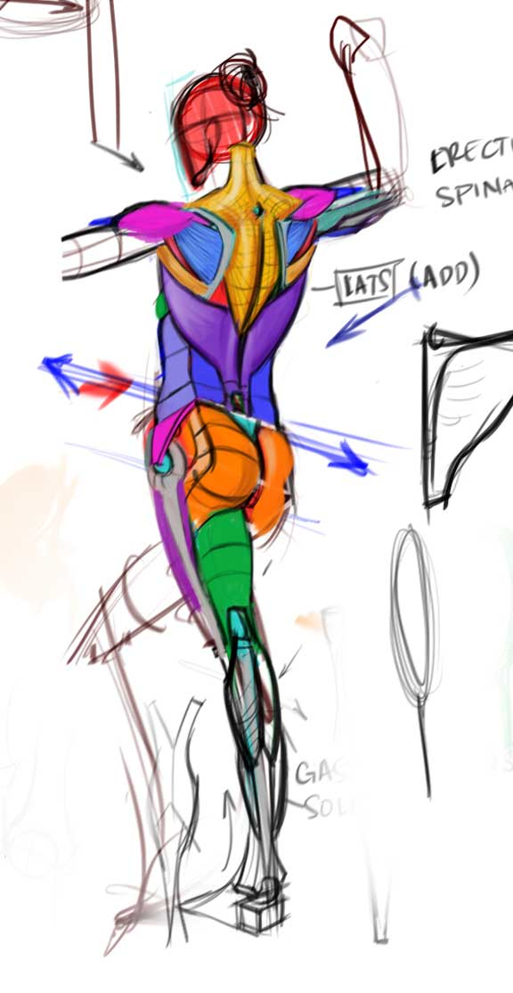 576x1114 Analytical Figure Drawing
