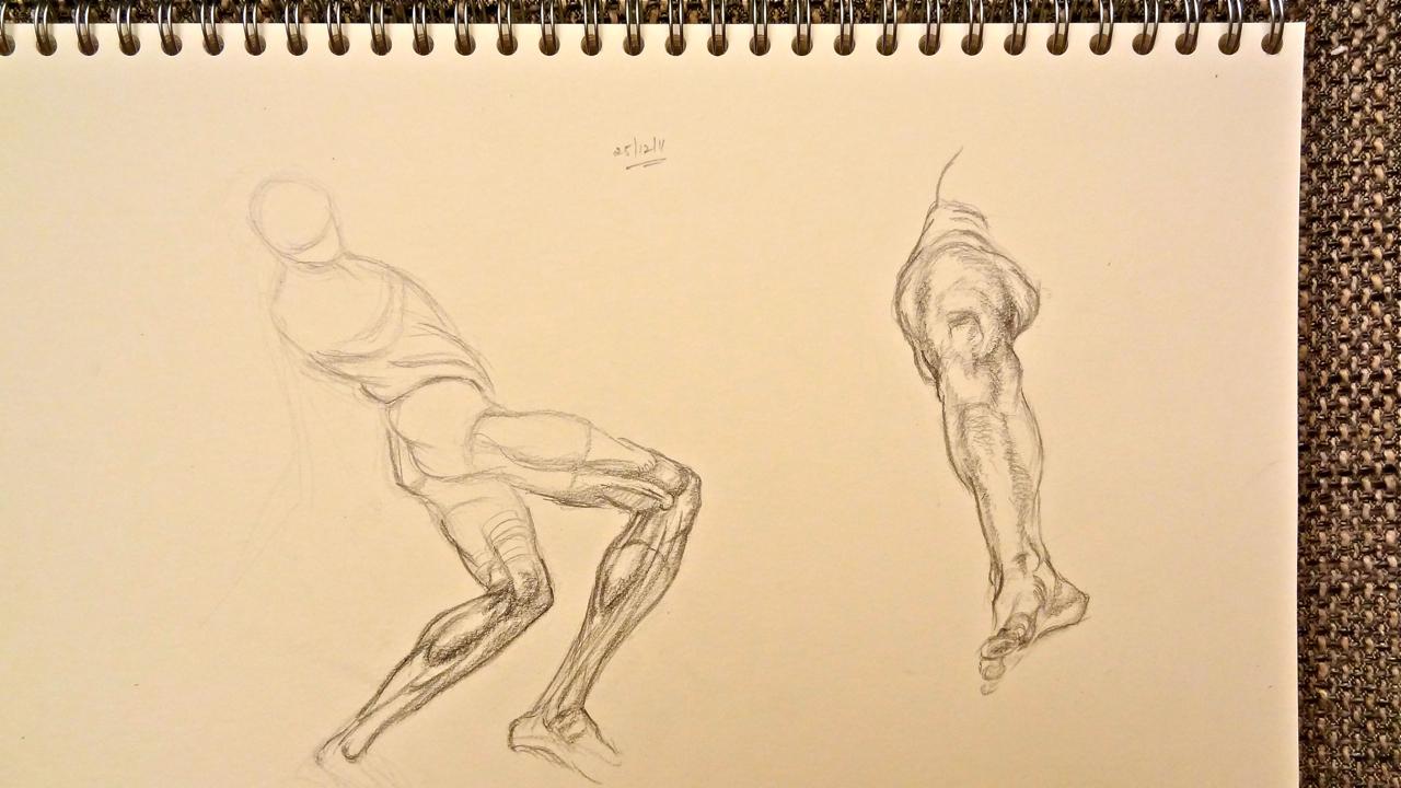 1280x720 Leg Muscles Watercolor Journal