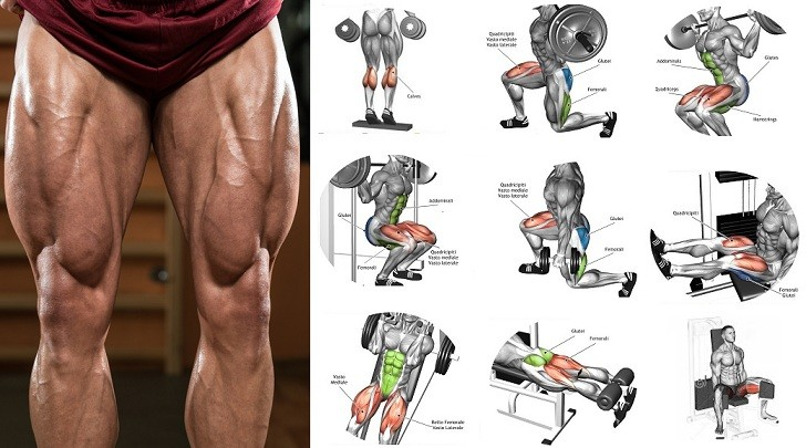 728x405 Top 6 Exercises On How To Build Leg Muscle