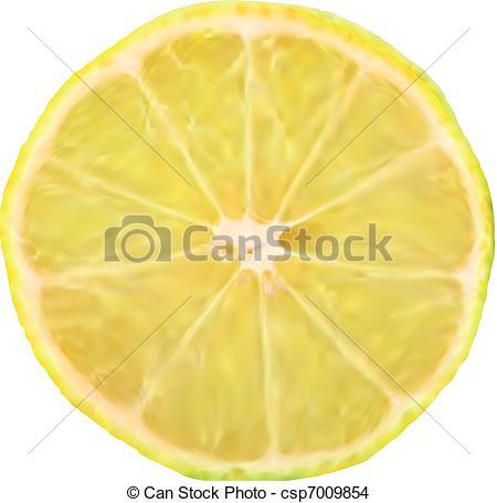 450x455 Lemon Slice Macro Perfect. Vector Illustration. Lemon Slice Eps