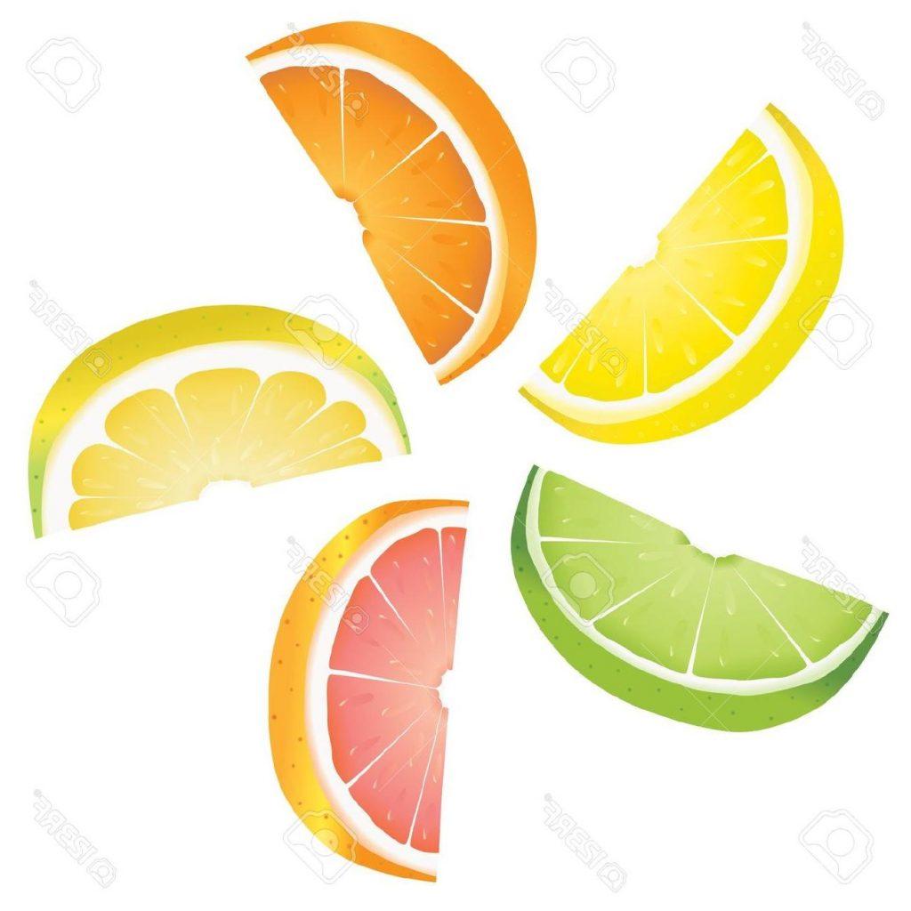lemon slice drawing at getdrawings com free for personal use lemon rh getdrawings com slice of lemon clipart