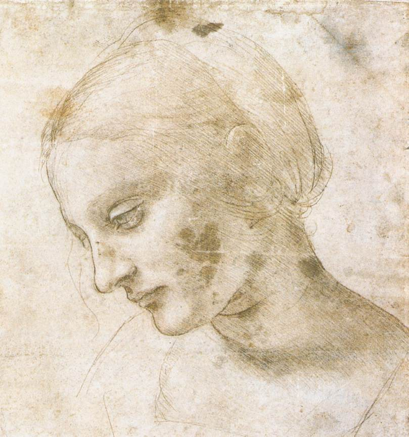 809x865 Study Of A Womans Head