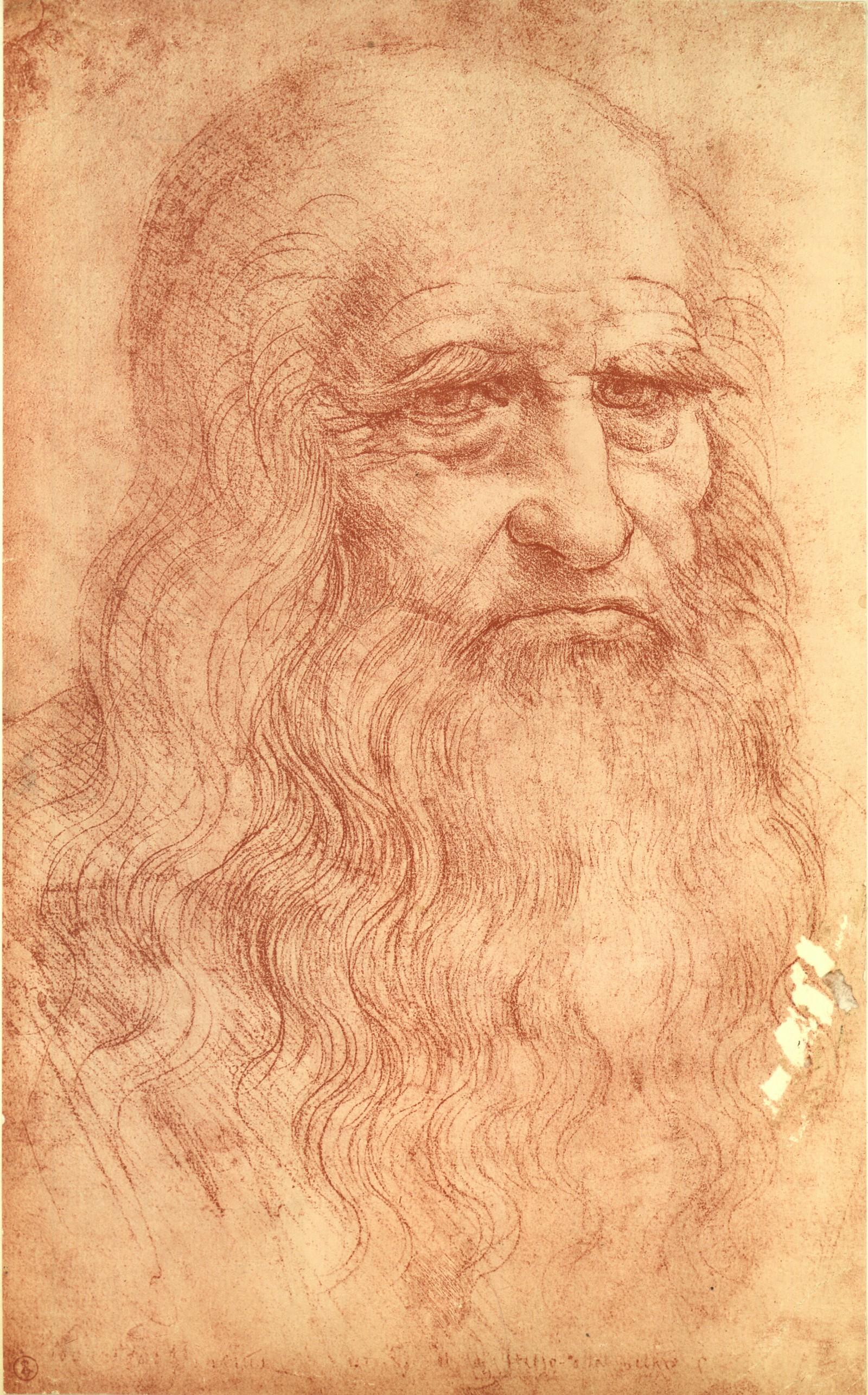 1600x2571 The Inspiration Behind Leonardo Da Vinci's Vitruvian Man