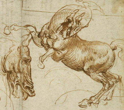 429x383 What's The Recipe For A Leonardo Da Vinci Drawing Ten Drawings