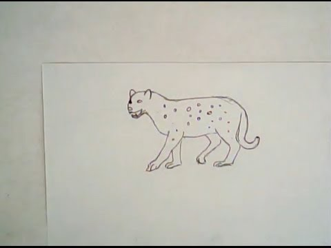 480x360 How To Draw A Leopard (Simple Drawing)