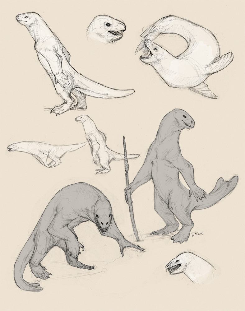 Leopard Seal Drawing at GetDrawings.com | Free for personal use ...