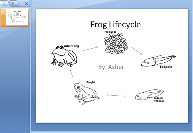 650x448 Frog Life Cycle Powerpoint K 5 Computer Lab Technology Lessons