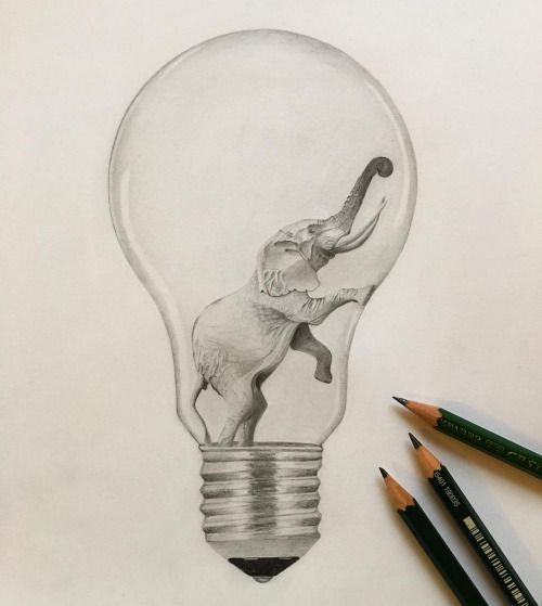 500x559 With Drawings Of Different Animals In Every Light Bulb. Art