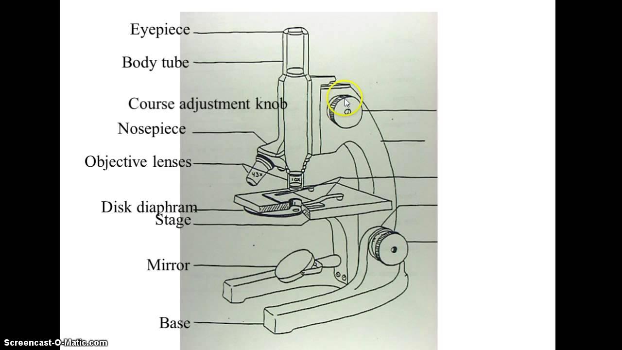 1280x720 Microscope Diagram