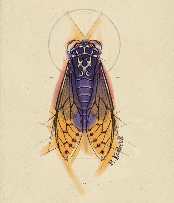 736x862 Lightning Bug Sketch Cicade Bug Tattoo Watercolor Watercolor