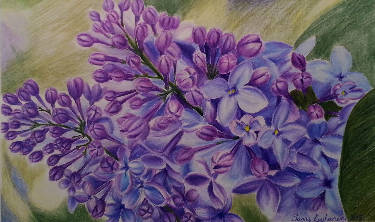 1280x760 How To Draw Lilacs Speed Drawing Colored Pencils