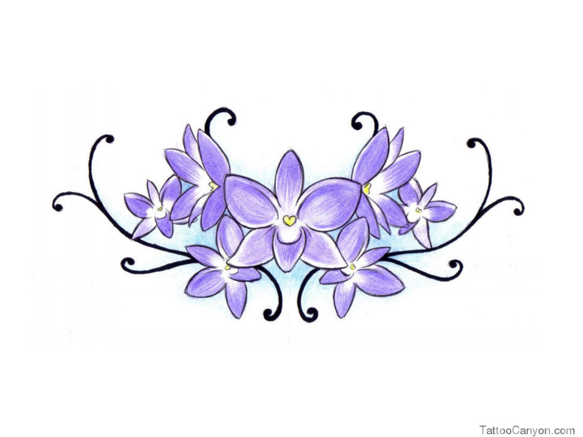 1920x1440 Violet Flower Drawing