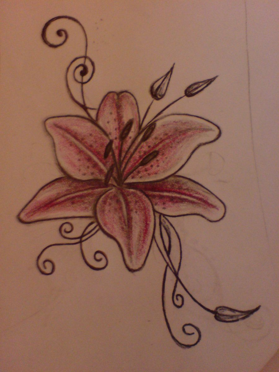 Lily drawing tattoo at getdrawings free for personal use lily 900x1200 blue tiger lily flower tattoo images for purple tiger lily tattoo izmirmasajfo