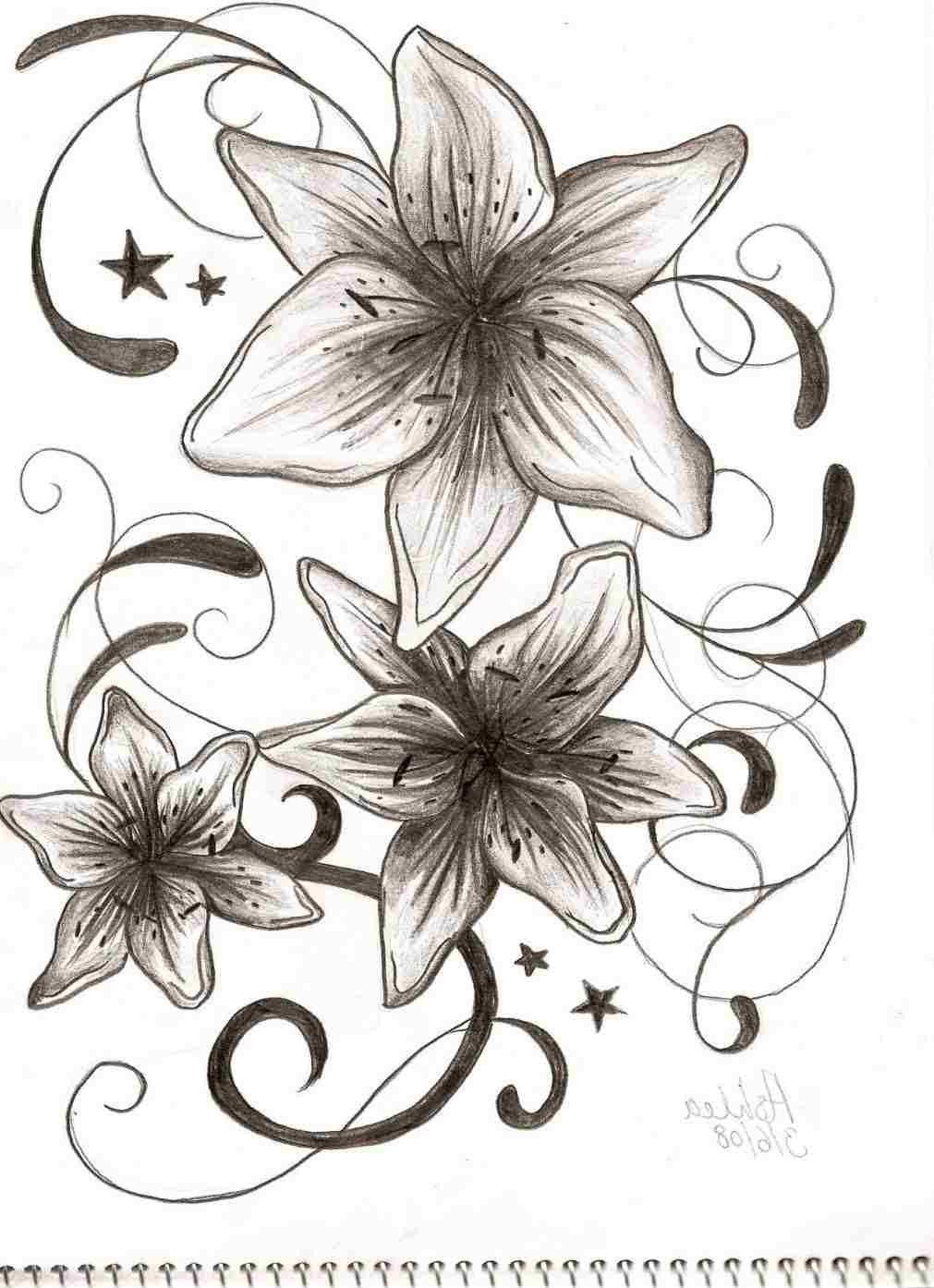 1011x1394 Lily Flower Drawing Tattoo