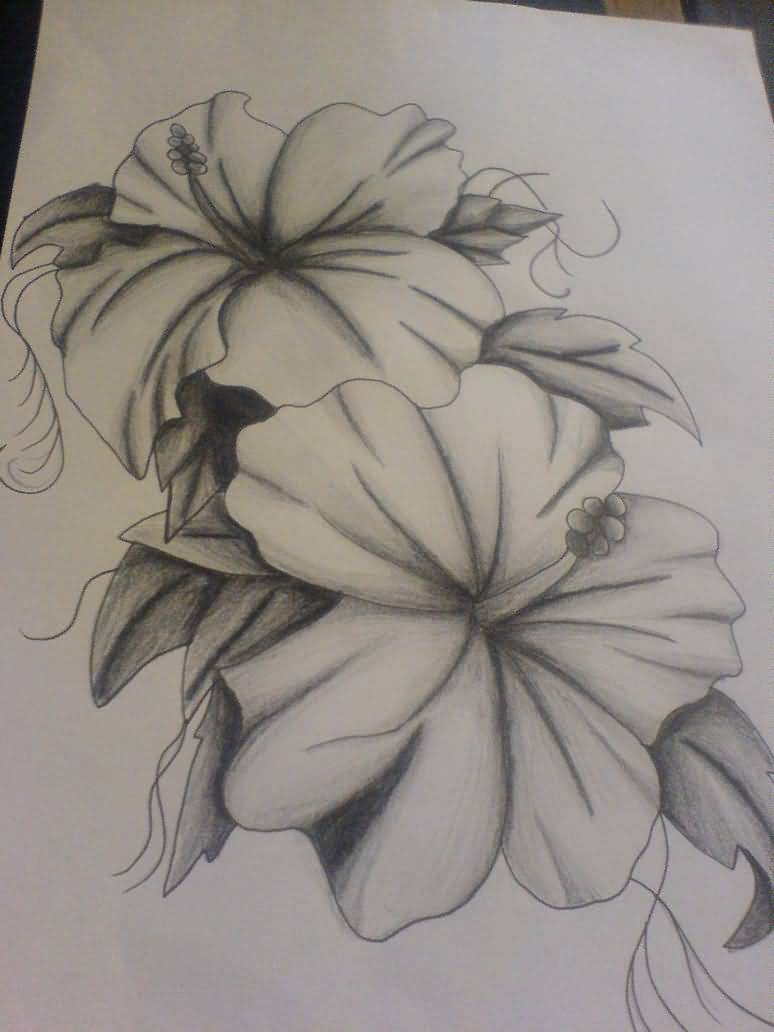 Lily flower tattoo drawing at getdrawings free for personal 774x1032 latest lily flower tattoo sketch izmirmasajfo