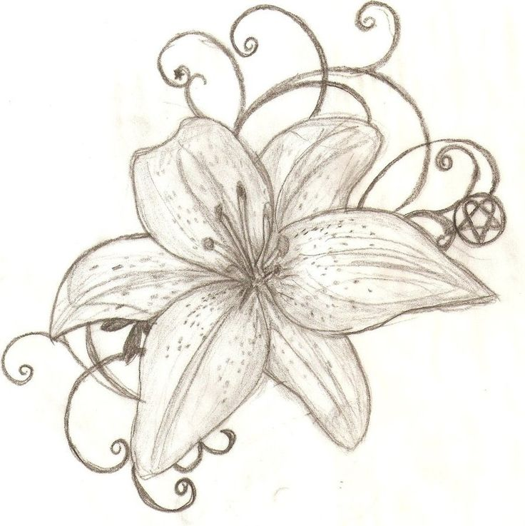 736x737 Lily Tattoos Ideas With Meaning