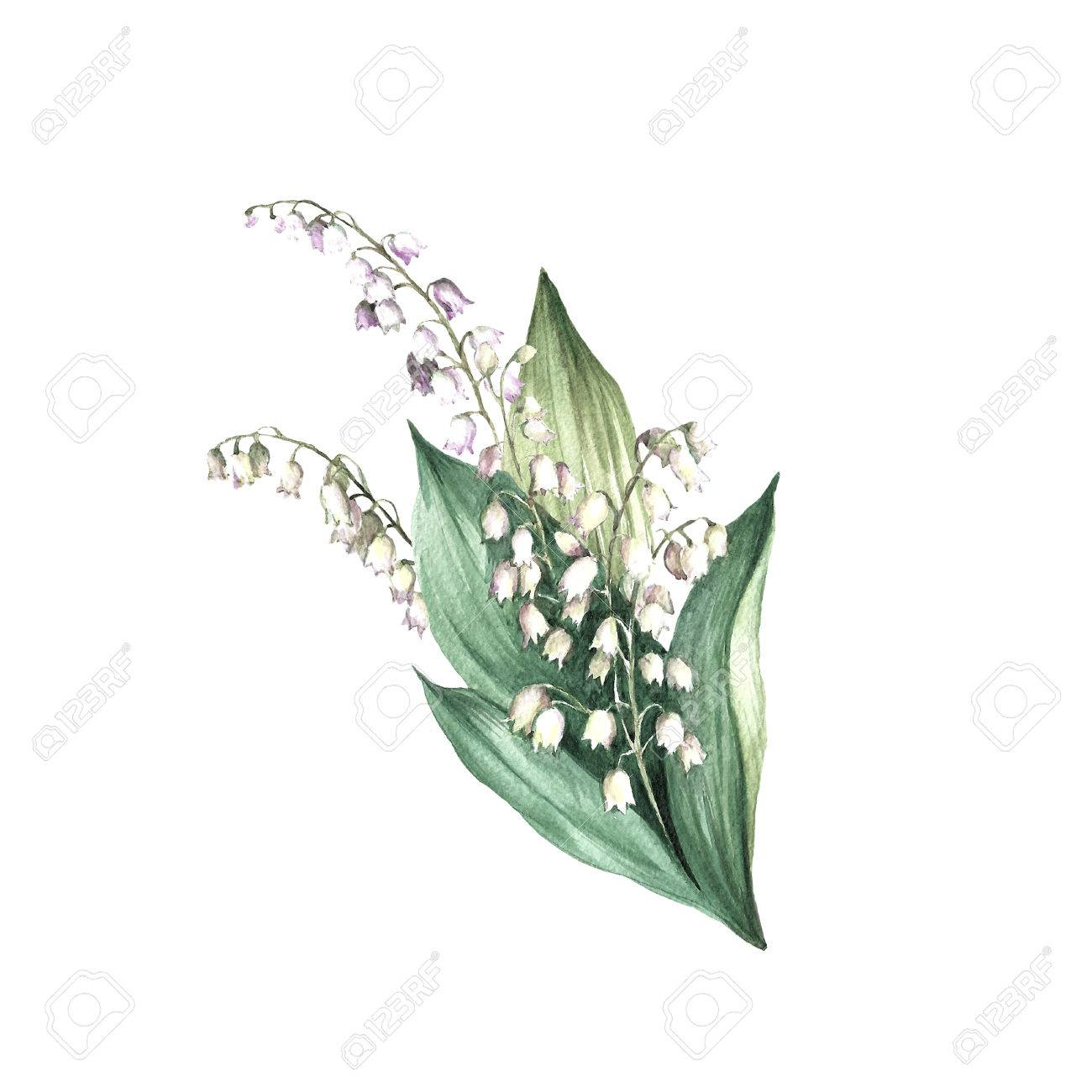 lily of the valley flower drawing at getdrawingscom