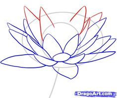 236x199 Are You Looking For A Tutorial On How To Draw A Lily Pad Look No