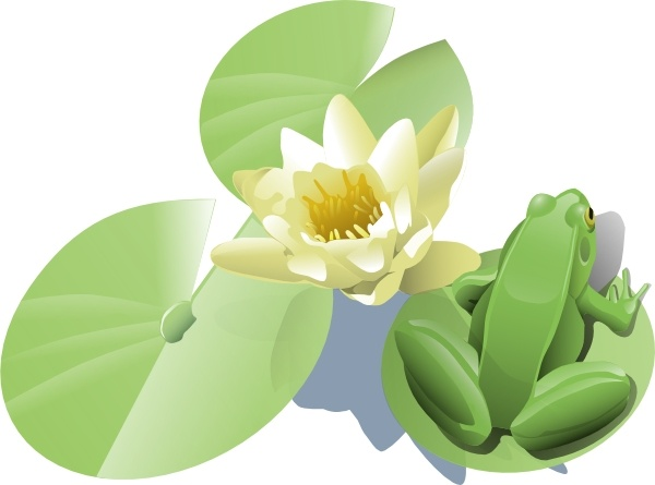 600x445 Leland Mcinnes Frog On A Lily Pad Clip Art Free Vector In Open