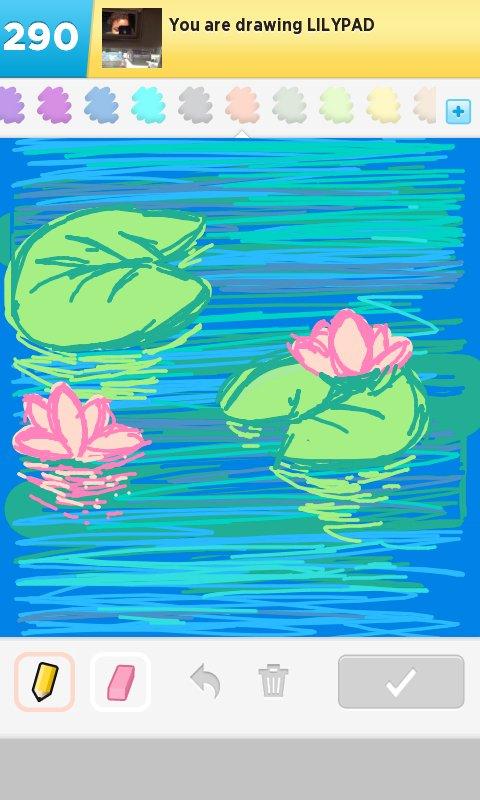 480x800 Lilypad Drawings