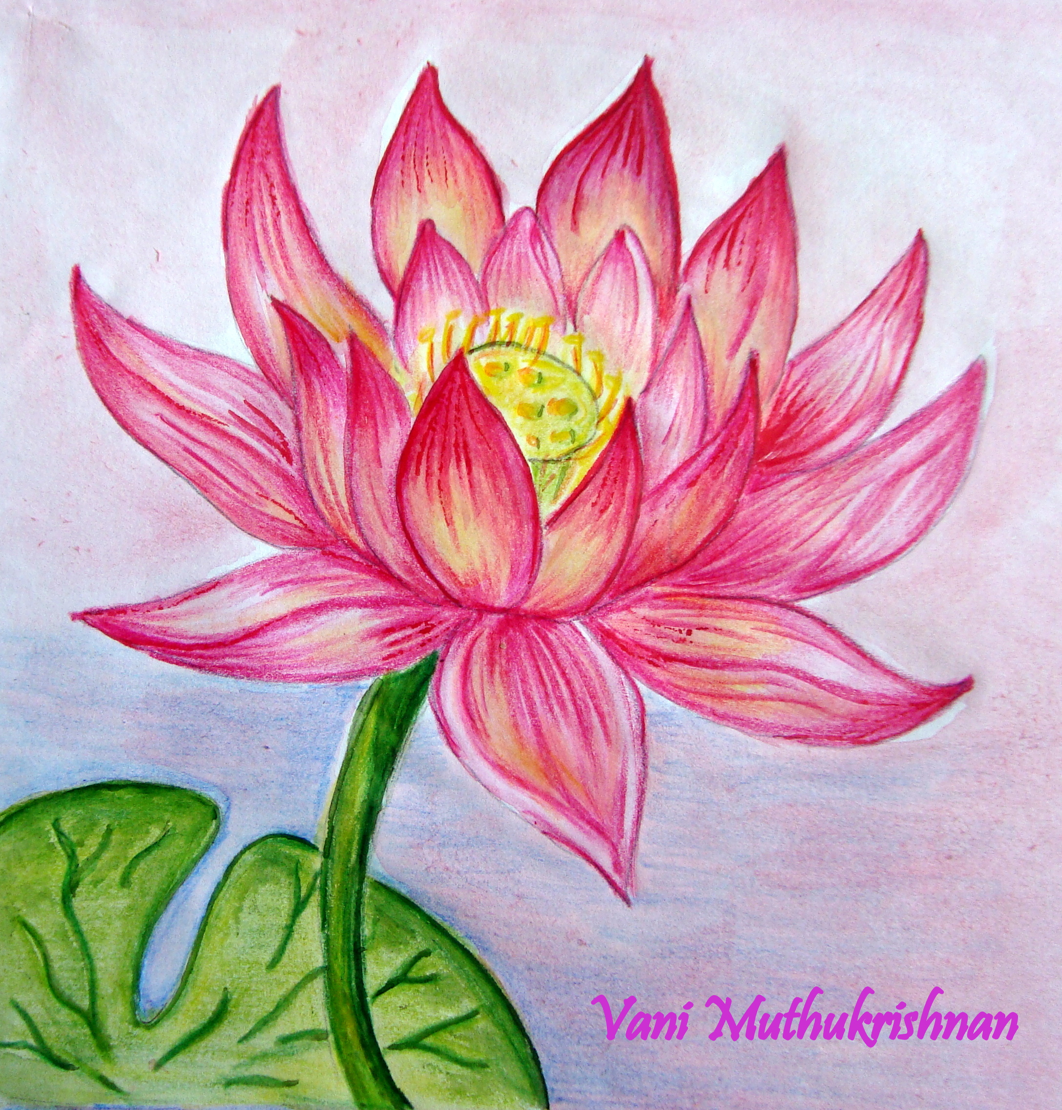 Lily pencil drawing at getdrawings free for personal use lily 2175x2272 dsc04638g 21752272 lotus pinterest art journaling izmirmasajfo Choice Image