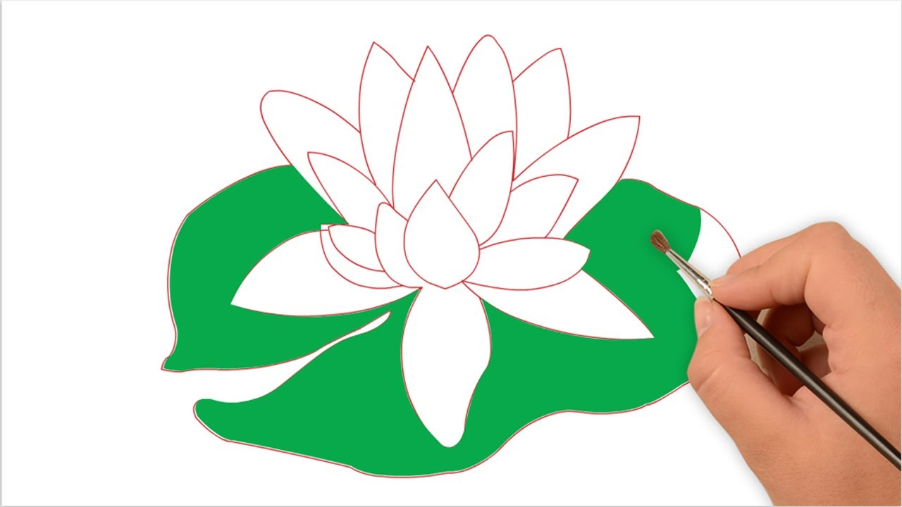 1280x720 How To Draw Water Lily For Kids Easy Step By Step (One Minute