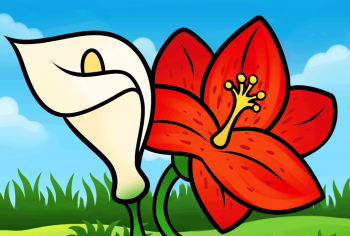 350x236 How To Draw How To Draw Lilies For Kids