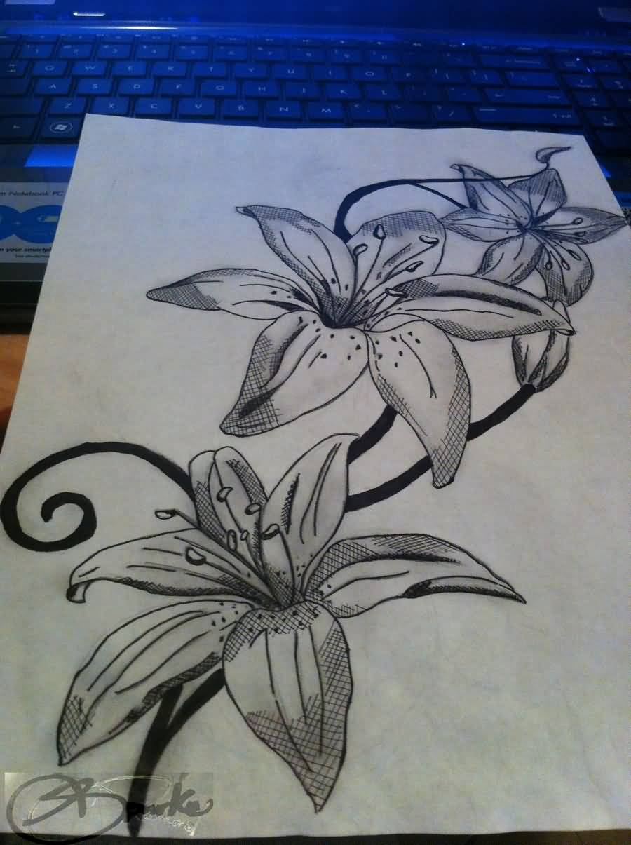 Lily tattoo drawing at getdrawings free for personal use lily 900x1205 amazing tattoo designs on paper best lily flower tattoo design on izmirmasajfo