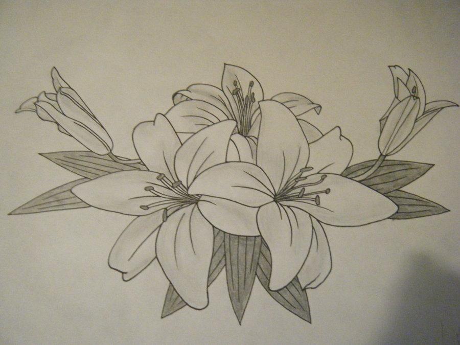 900x675 Lily Tattoo Finsihed By ~jess Wood On Tattoos