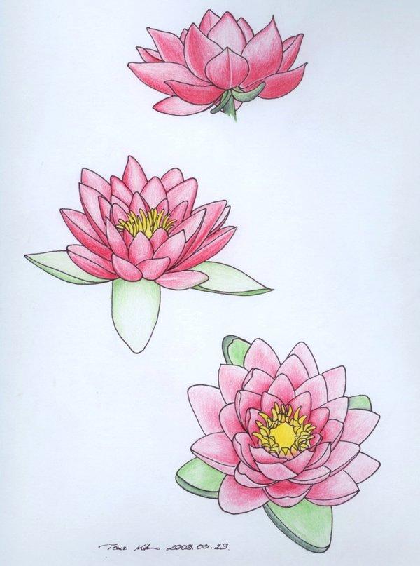 600x807 Water Lily Tattoo