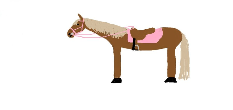 900x424 Limo Horse