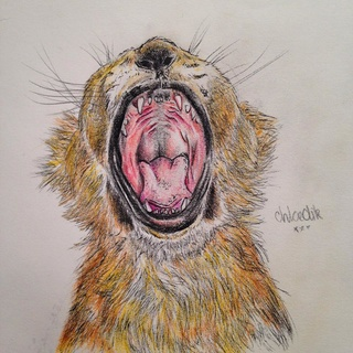 320x320 Lioncub Drawings On Paigeeworld. Pictures Of Lioncub