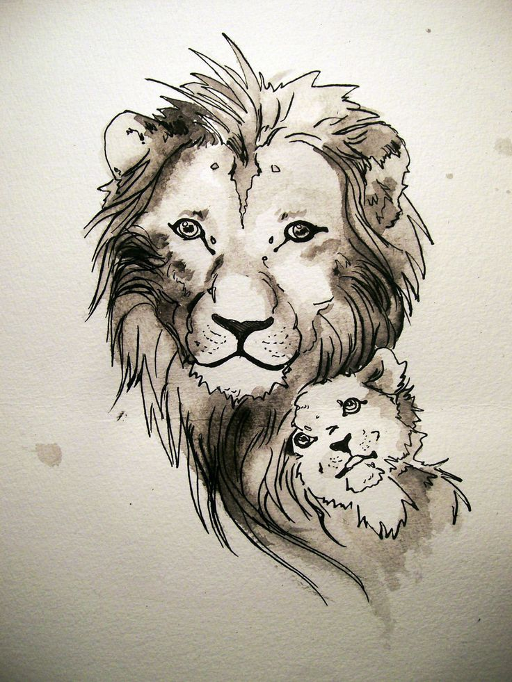 736x981 20 Best Tattoo Designs Tribal Lion And Cub Images