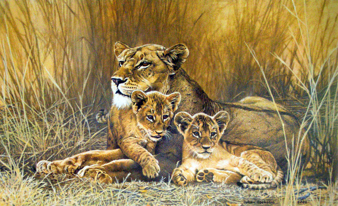 1150x704 Lioness And Cubs 2002 Johan Hoekstra Wildlife Art Johan