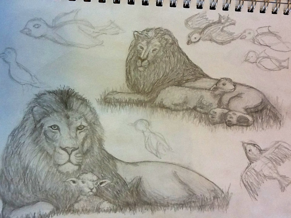 960x720 Lion And Lamb Sketches By Blcullers