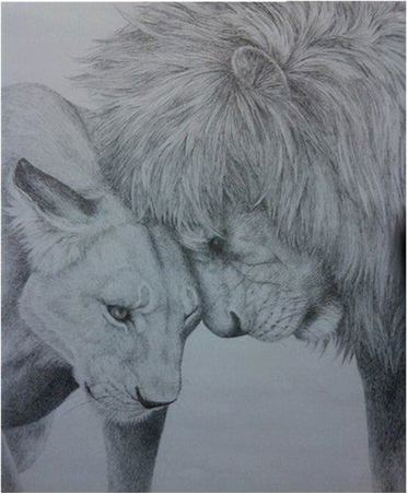 373x452 Lion And Lioness By Maiacarlson