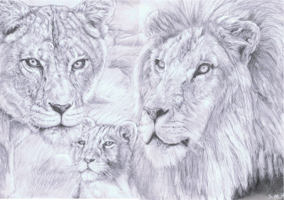 400x282 Pride Teen Artphoto About Animals, Landscapes, Nature, Lion